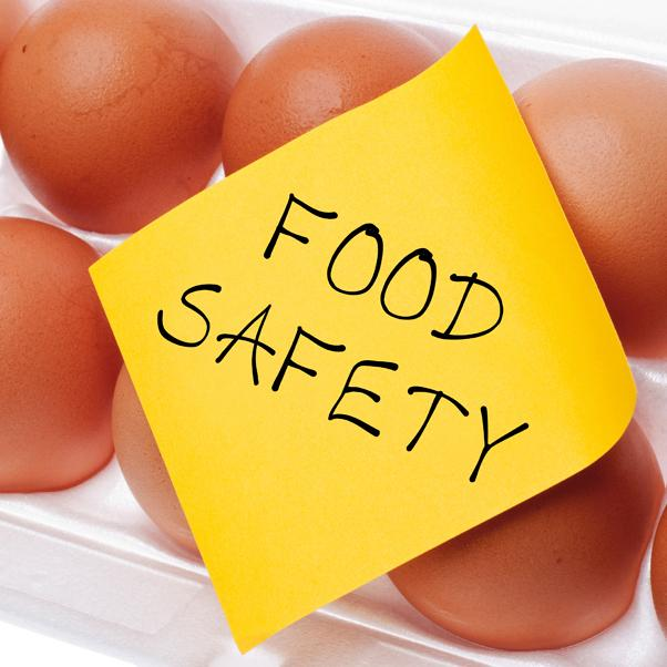 food-safety-eggs